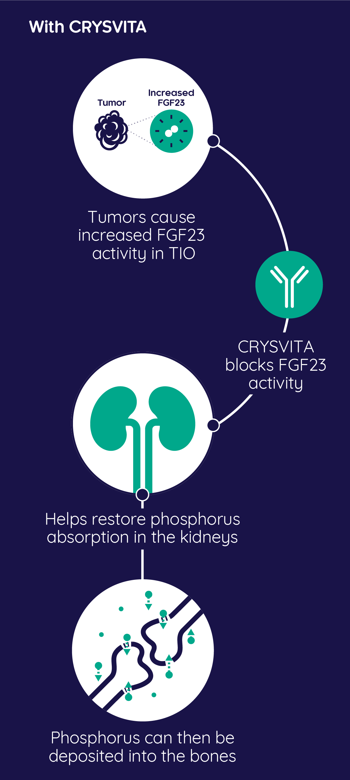 How CRYSVITA® helps treat TIO symptoms